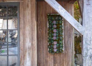 Vertical Zinc Wall Planter