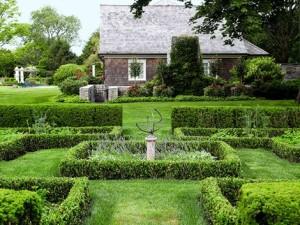 Garden Hedges