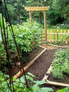 spring garden planting