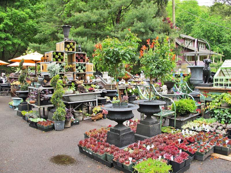 Marvin Gardens Garden Ftempo